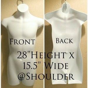 Male Half Torso Display Mannequin